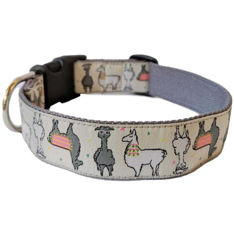 Mango Street Bamboo Dog Collar by Molly Mutt