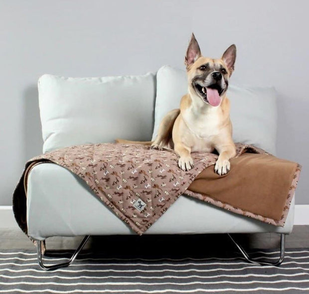 Pet Blankets by Molly Mutt