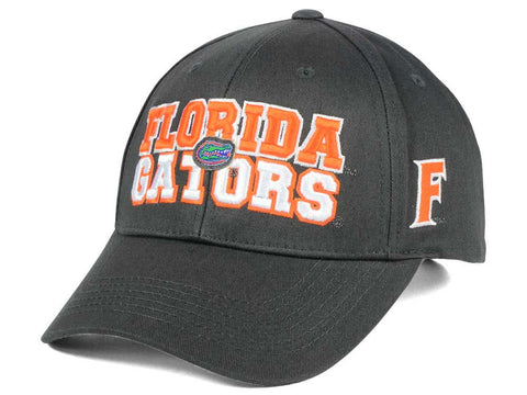 Florida Gators Charcoal Teamwork Snapback Hat