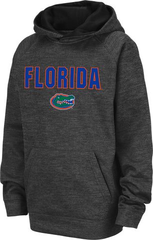 Youth Florida Gators Grey Pullover Hoodie