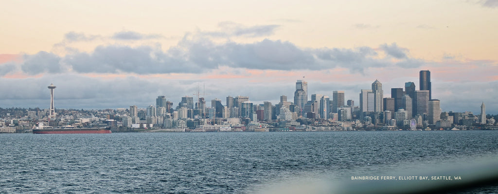 Mt. Rainier, Elliott Bay