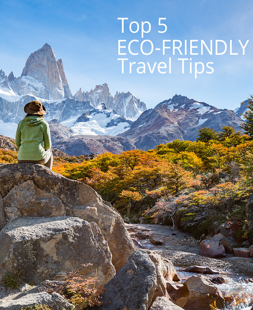 Top 5 Eco-Friendly Travel Tips | Ricardo Beverly Hills