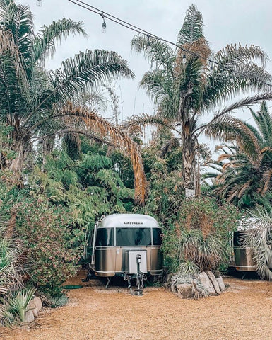 Picture of a silver Airstream trailer parked beneath palm trees.