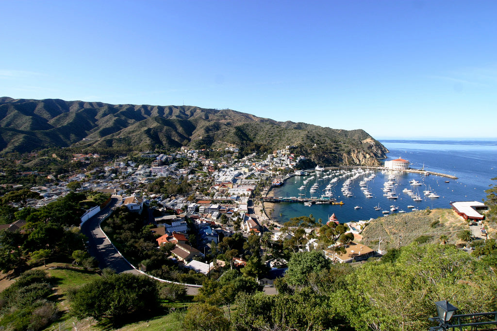 Catalina Island Aerial View