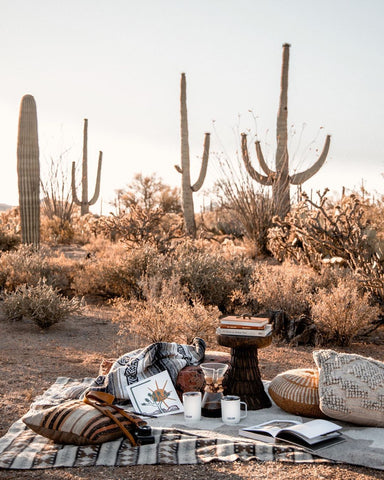 A picnic blanket with pillows set up in the desert surrounded by cacti