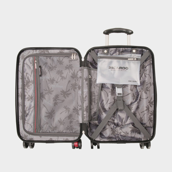 Carry-On San Clemente 21-Inch Carry-On Suitcase in Moon Silver Open View in  in Color:Moon Silver in  in Description:Opened