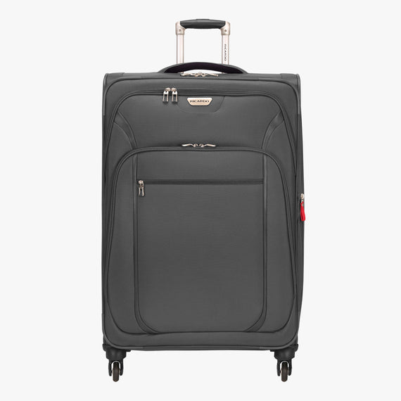 Large Check-In Santa Cruz 6.0 28-inch Large Check-in Suitcase in Grey Front View in  in Color:Grey in  in Description:Front