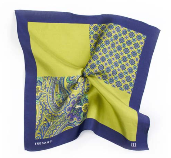 Printed Navy and Green Pocket Square by Tresanti