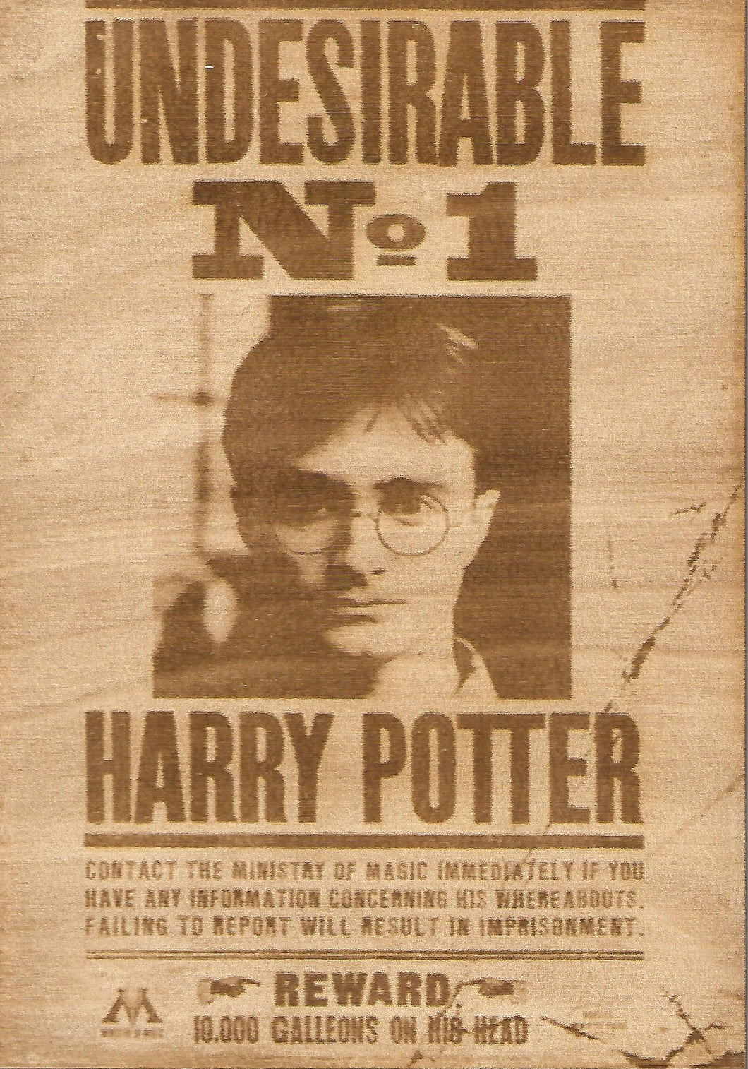 Harry Potter - Harry Potter (Undesirable No. 1) Wooden Wanted Poster - TantrumCollectibles.com