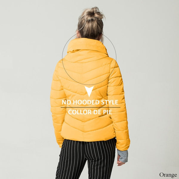 no-hooded-orange
