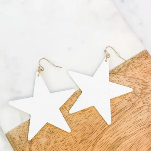 Textured Star Dangle Earrings - Why Not Boutique