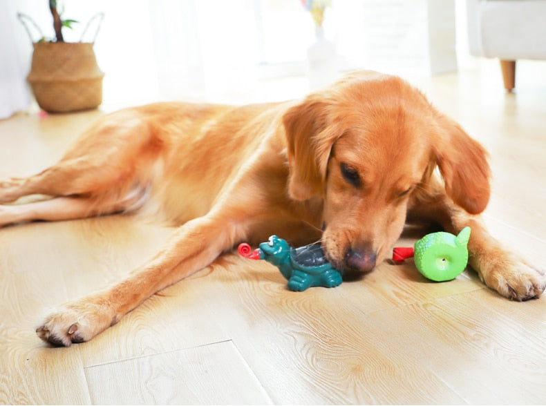 Toy Rubber Ball  Bite-Resistant Training Toy