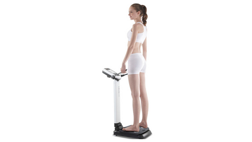 InBody Analyzer (Body Composition Analyzer)