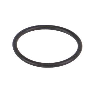 LS125G, ORING FOR LS100 SCREENS
