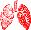 How to Reduce COPD Effects
