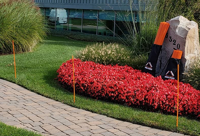 Plow Right Orange Marking Stakes Along Sidewalk by Landscaping