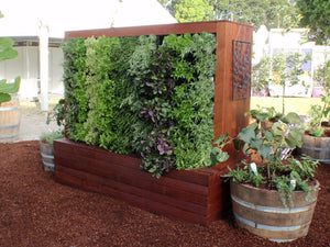 Slim Pro feature vertical garden in backyard