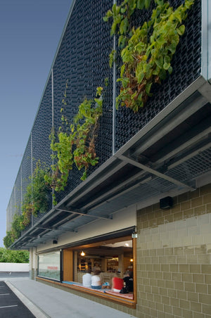 Ferry rd markets also have used as a vertical garden on the Gold coast