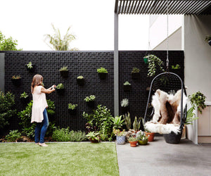 Green wall pots being used to create a stunning vertical garden with the 52mm drainage cell