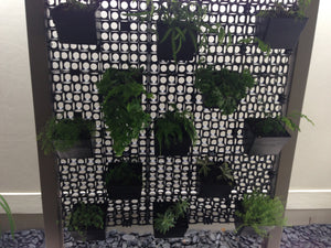 DIY vertical garden project on the Gold Coast