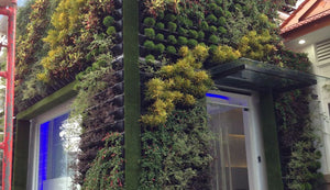Vertical garden kits used to cover a building