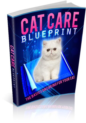 Cat Care Blue Print Ebook PDF - Bysah