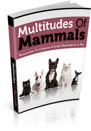 Multitudes Of Mammals Ebook PDF - Bysah