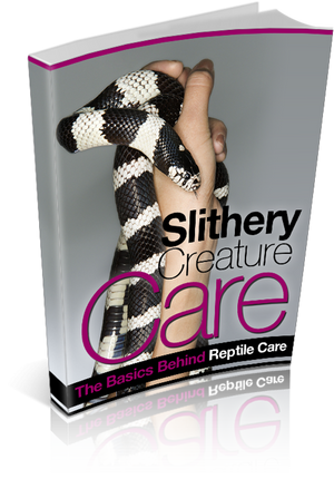 Slithery Creature Care Ebook PDF - Bysah