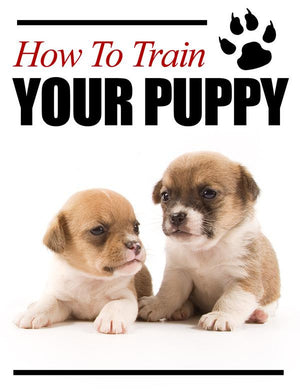 How To Train Your Puppy Ebook PDF - Bysah