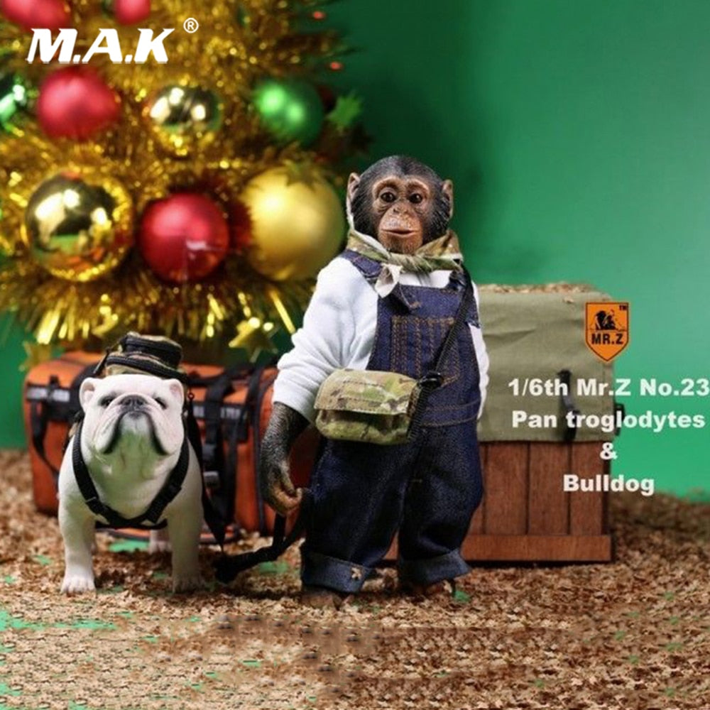 1:6 action figure Accessories Mr.Z 1/6 Chimpanzee and Bulldog Suit Pan Troglodytes Pet Dog Model F Collection