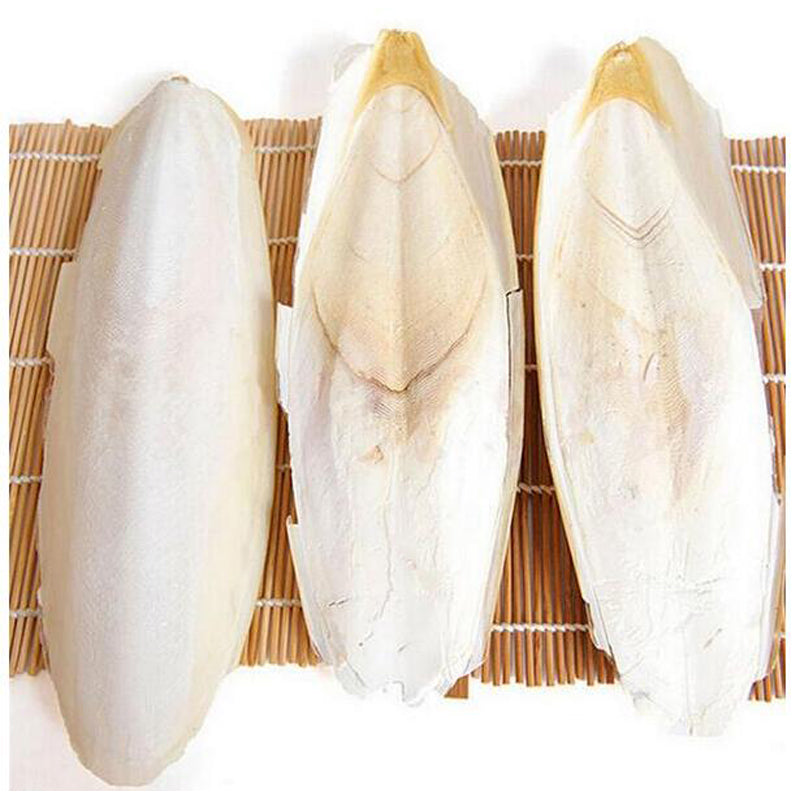 10PCS/set Cuttlefish Bone Parrot Chew Toy For Pet Budgie Birds Reptiles Tortoise Pet Calcium Health Care Products