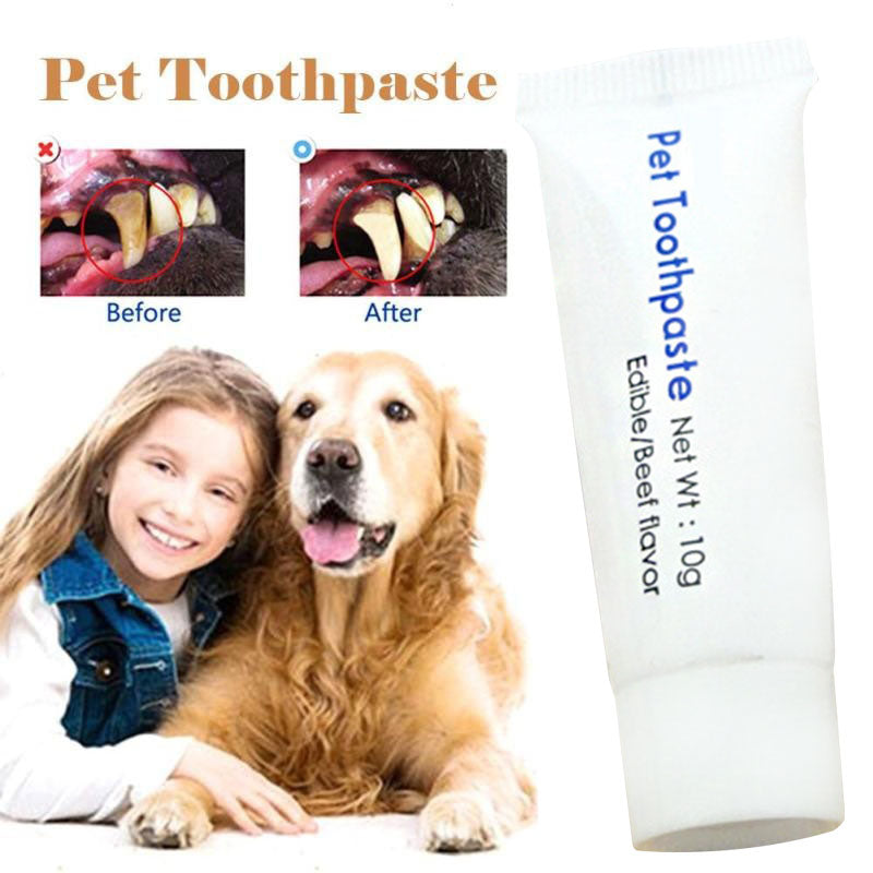 10g Pet Toothpaste Dog Cat Clean Toothpaste Healthy Toothpaste Cleaning Tooth Washing Beef Flavor Teeth Care Pets Supplies