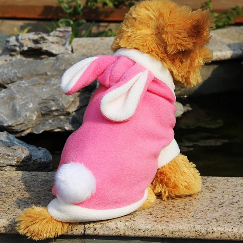 1PC Cute Rabbit Pattern Dog Clothes Fashion Spring Hoodies Clothes For Little Teddy Dog Lamb Fur Pet Dog Accessories
