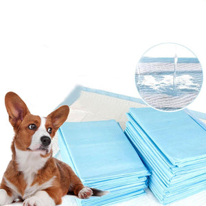 20 Pcs Puppy Pet Dog Cat Indoor Toilet Training Pad Super Absorbent Pet Pads Dog Supplies