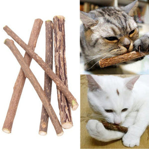 5pcs Natural Mutian Pet Snack Cat Chew Stick Treat Toy Catnip Molar Food Cat mint