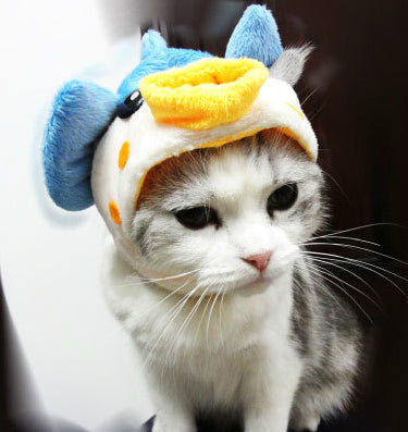 Funny Pet Cat Costume Cute Cartoon Puppy Cat Cap Hat Rabbit Ear Design Pet Cats Wig Party Cosplay Costume Accessory Kitten Teddy