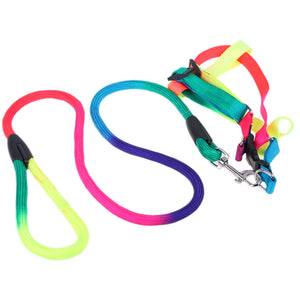 Rainbow Color Dogs Collars Leads Puppy Harness Leashes Chest Straps Pet Traction Ropes Dog Supplies
