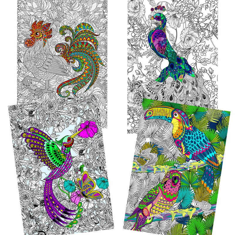 "Great2bColorful Coloring Posters - 16"" x 24"" Pack of 4 - Birds Around The World (1)"