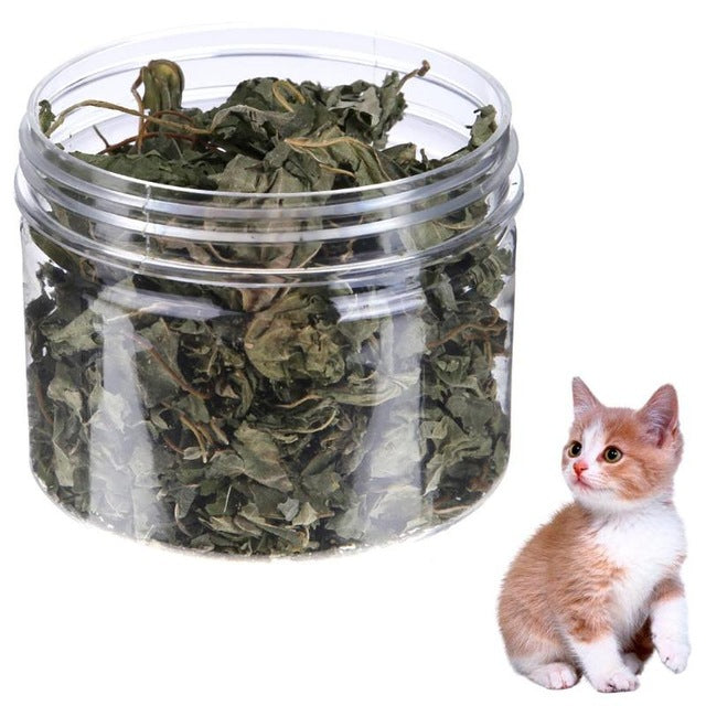 300ML Cat Natural Catnip Mint Leaves Grass Menthol Flavor Toys for Cat Kitten Health Care Products Pet Supplies