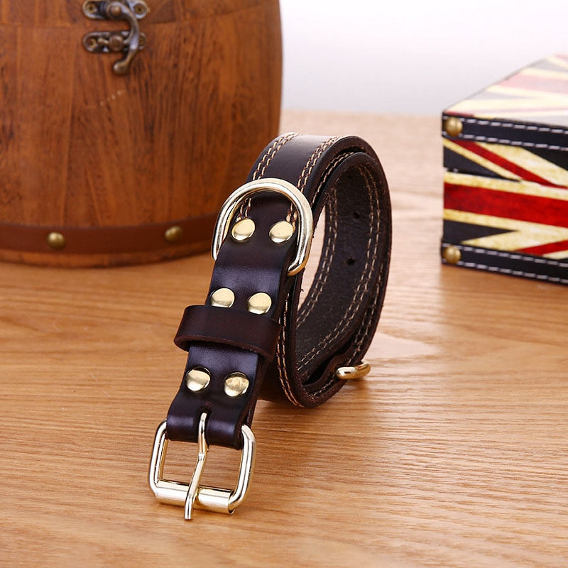 Leather Dog Collar Genuine Leather Alloy Hardware Double D-ring 4 Size Available Best for Samll Medium Large and Extra Large Dog