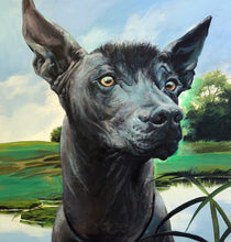Load image into Gallery viewer, Xoloitzcuintli