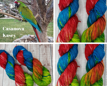 Load image into Gallery viewer, Casanova Kasey - Sock/Fingering - DK Weight - Worsted - Hand Dyed Yarn