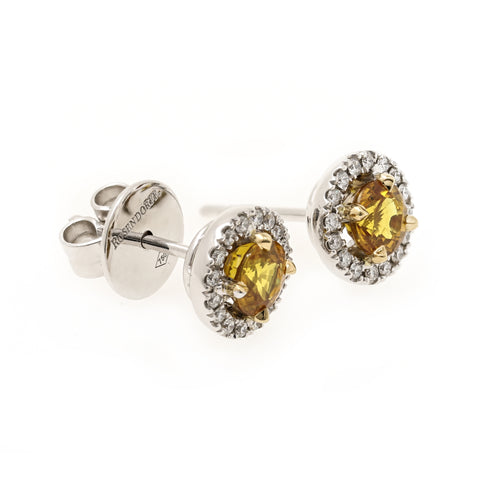 Golden Sapphire & Diamond Halo Earrings