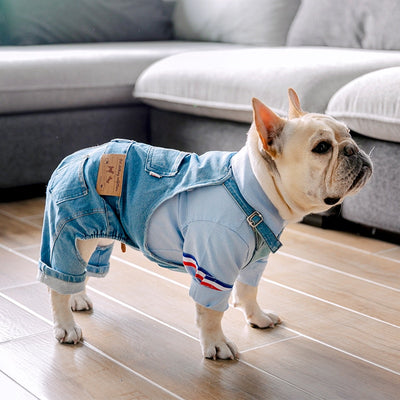 Dog Jeans Overalls Bulldogs Dungarees Suitable-For French MPK Pugs