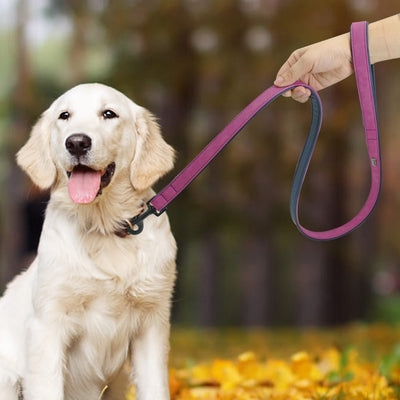 Lead Leash-Harness Training-Rope-Belt Pet-Supplies Puppy Dog Walking Running Large Pet-Dog