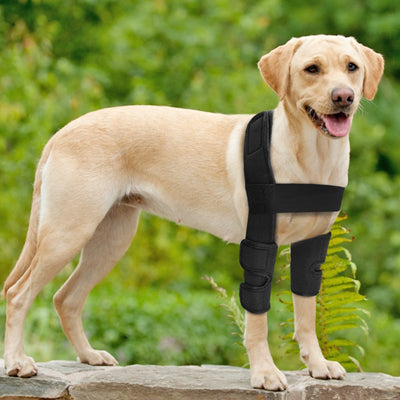 Brace Medical-Supplies Canine Dogs Front-Leg Surgical Joint-Wrap Wounds Dog-Knee Injuries