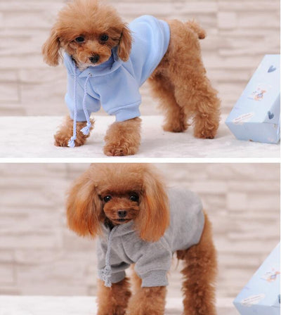 Dog Hoodies Dog-Sweatshirts Xs-To-Xxxl Autumn NEW Spring for Small Cat Large Leisure