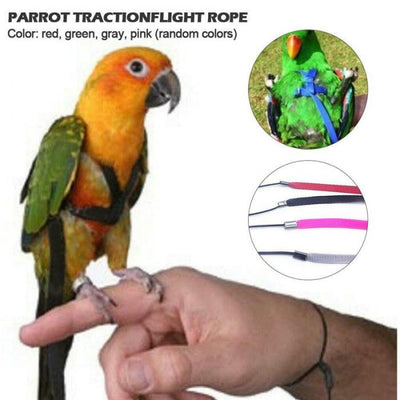 Training-Rope Leash Bird-Harness Parrots Outdoor Anti-Bite Adjustable