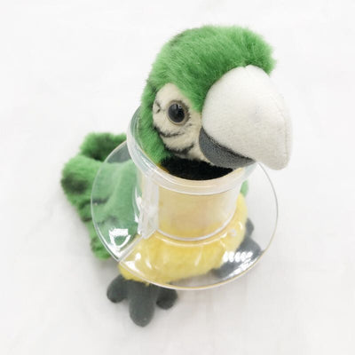 Acrylic-Tube-Collar Macaw-Cockatoo Bird Parrot Restricts Feather Plucking for Severe