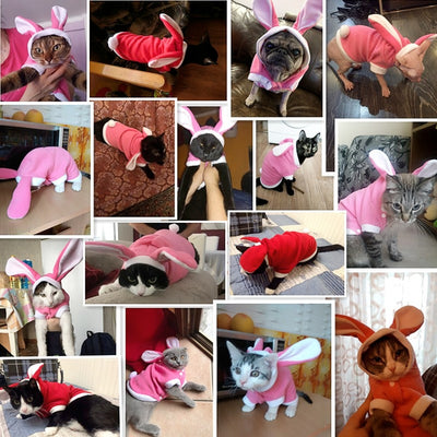 Costume Hoodies Outfit Pet Pet-Cat-Jacket Puppy-Fleece Rabbit for Cute Cat-Clothing Warm